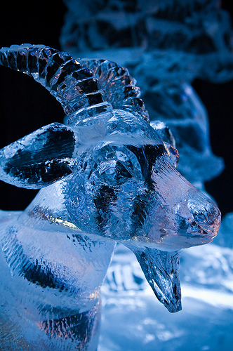 wydruk 3d z lodu